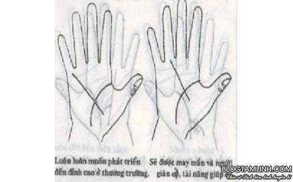 Cách xem chỉ tay
